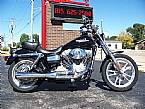 2006 Other H-D Dyna Super Glide FXDI Picture 3