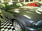 2007 Ford Shelby Picture 3