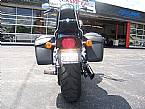 2009 Other H-D Softail Picture 3