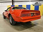 1977 Pontiac Trans Am Picture 3