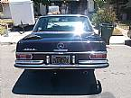 1967 Mercedes 250S Picture 3