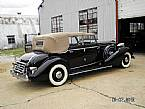 1935 Cadillac 355A Picture 3