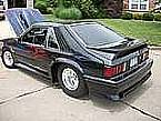 1981 Ford Mustang Picture 3