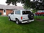 1995 Ford Bronco Picture 3