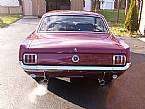 1964 1/2 Ford Mustang Picture 3