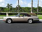 1994 Jaguar XJS Picture 3