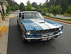 1966 Shelby GT350 Picture 3