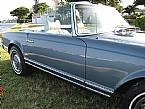 1970 Mercedes 280SL Picture 3