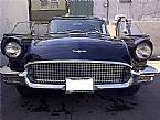 1957 Ford Thunderbird Picture 3
