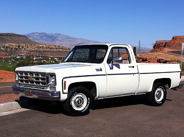 1975 Chevrolet Silverado 1500 For Sale  Carsforsalecom