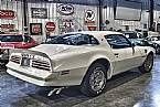 1976 Pontiac Trans Am Picture 3