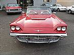 1960 Ford Thunderbird Picture 3
