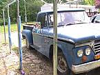 1964 Dodge Pickup Picture 3