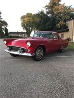 1955 Ford Thunderbird Picture 3