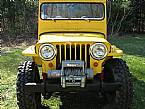 1947 Willys CJ2A Picture 3