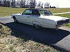 1966 Ford Thunderbird Picture 3