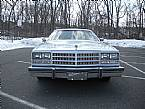 1977 Buick Century Picture 4