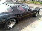 1981 Pontiac Trans Am Picture 4