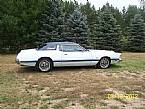 1973 Ford Thunderbird Picture 4