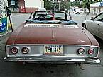 1965 Chevrolet Corvair Picture 4