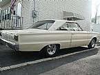 1966 Plymouth Satellite Picture 4