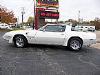 1979 Pontiac Trans Am Picture 4