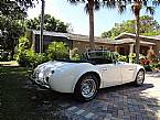 1953 Austin Healey Sebring Picture 4