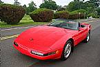 1994 Chevrolet Corvette Picture 4