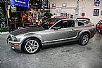 2008 Ford Shelby Picture 4