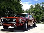 1967 Ford Mustang Picture 4