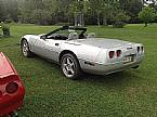 1980 Chevrolet Corvette Picture 5