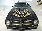 1976 Pontiac Trans Am Picture 5