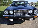 1986 Jaguar XJ6 Picture 5
