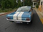 1966 Shelby GT350 Picture 5