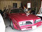 1977 Pontiac Trans Am Picture 6