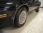 1981 Pontiac Trans Am Picture 6