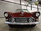 1956 Ford Thunderbird Picture 6