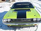1970 Dodge Challenger Picture 6