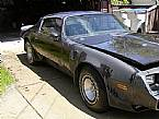 1980 Pontiac Trans Am Picture 6