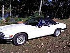 1990 Jaguar XJS Picture 8