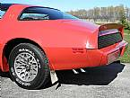 1979 Pontiac Trans Am Picture 8