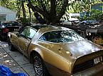 1978 Pontiac Trans Am Picture 8